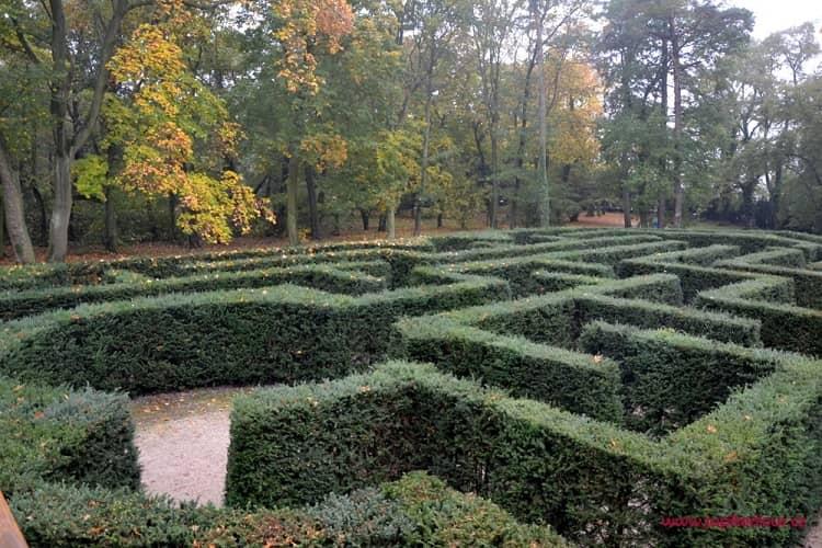 Лабиринт в парке, замок Лоучень